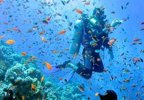 Duiken Sint Maarten